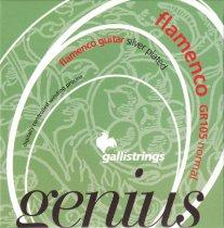 Galli Genius GR105 NT Flamenco Guitar Strings, Full Set