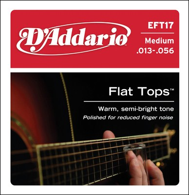 D'Addario EFT17 Medium Flat Tops, Full Set