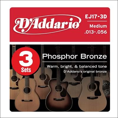 D/'Addario GH Acoustic Guitar Humidifier