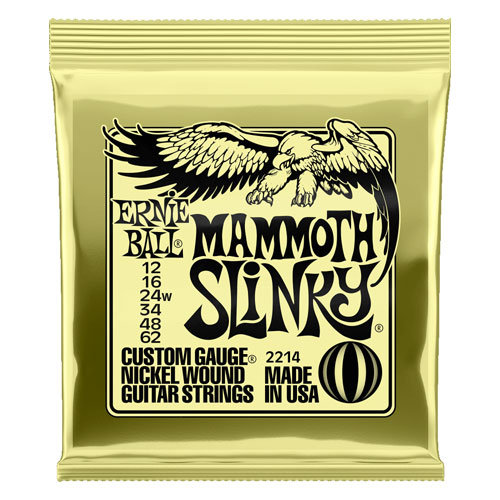 ERNIEBALL Mammoth 2214 Nickel Wound 12-62 Wound G